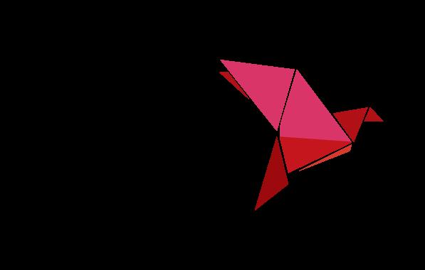 Logo of Bkash